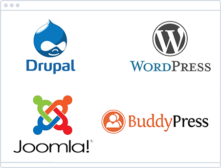 CMS (WordPress, Drupal, Joomla, Blogger, BuddyPress)