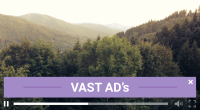 Why your Business Needs VAST Video Ads